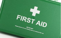 Introduction to First Aid at Work - £24.99